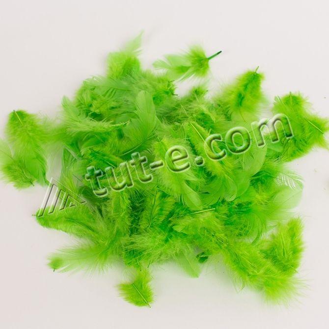 Перья травяные