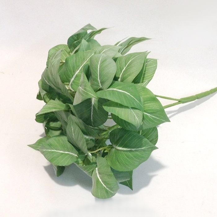 Куст листьев светло-зеленых