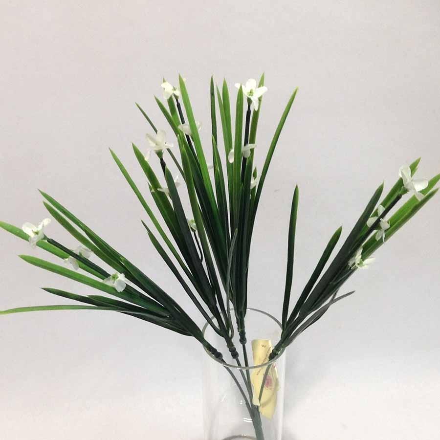 Куст травки болотной с белыми цветами