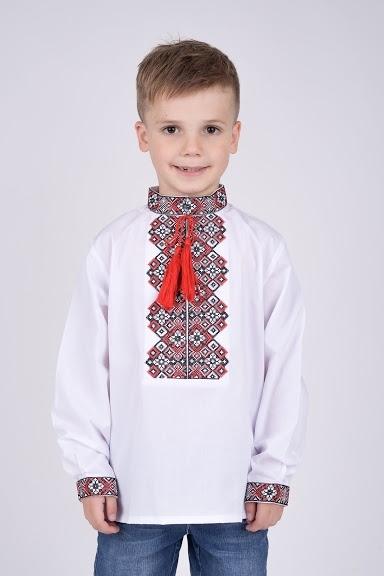 Вышиванка на мальчика с красной вышивкой