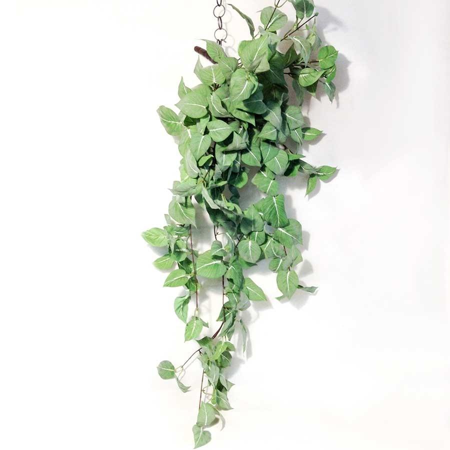 Куст плющелистной зелени 110см