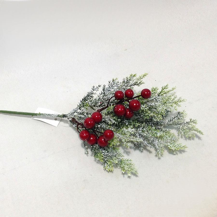 Веточка туи заснеженная с красными ягодами