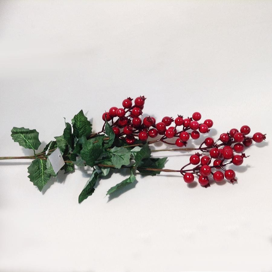 Ветка с красными ягодами
