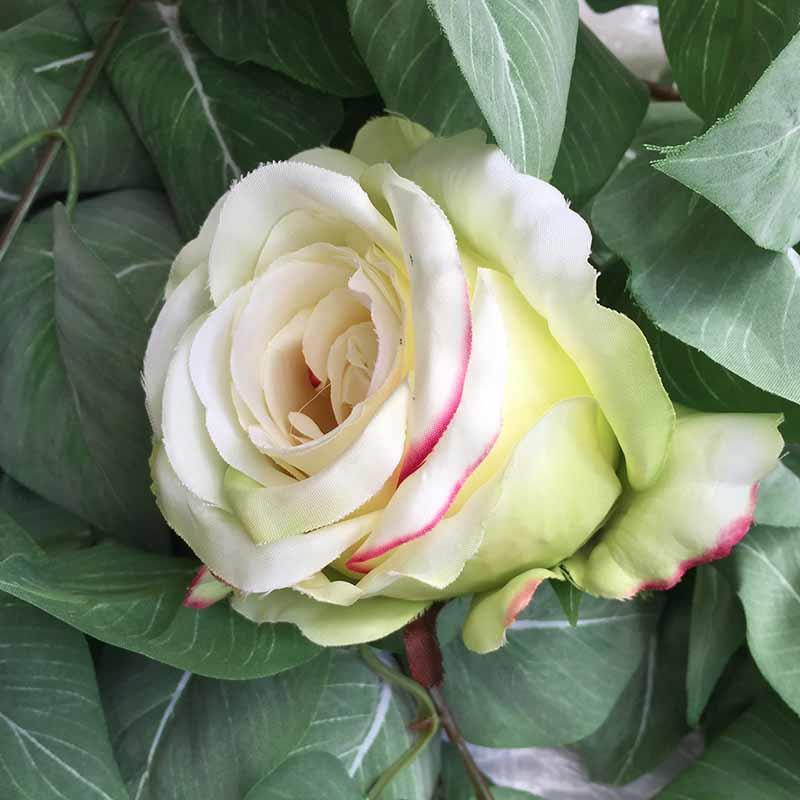 Головка розы КАРДИНАЛ салатово-кремовая