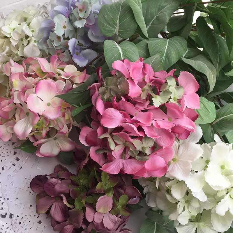 Головка гортензии изящной нежно розовая - Изображение 2